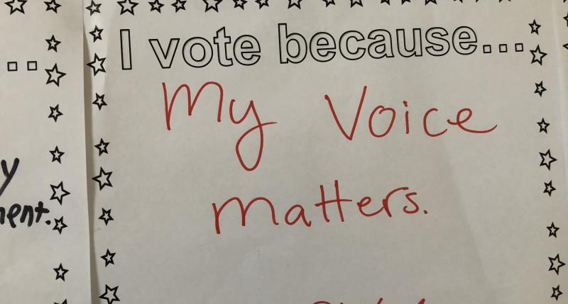 I vote because... My voice matters