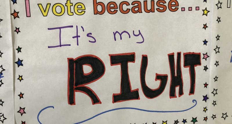 I vote because... It's my right